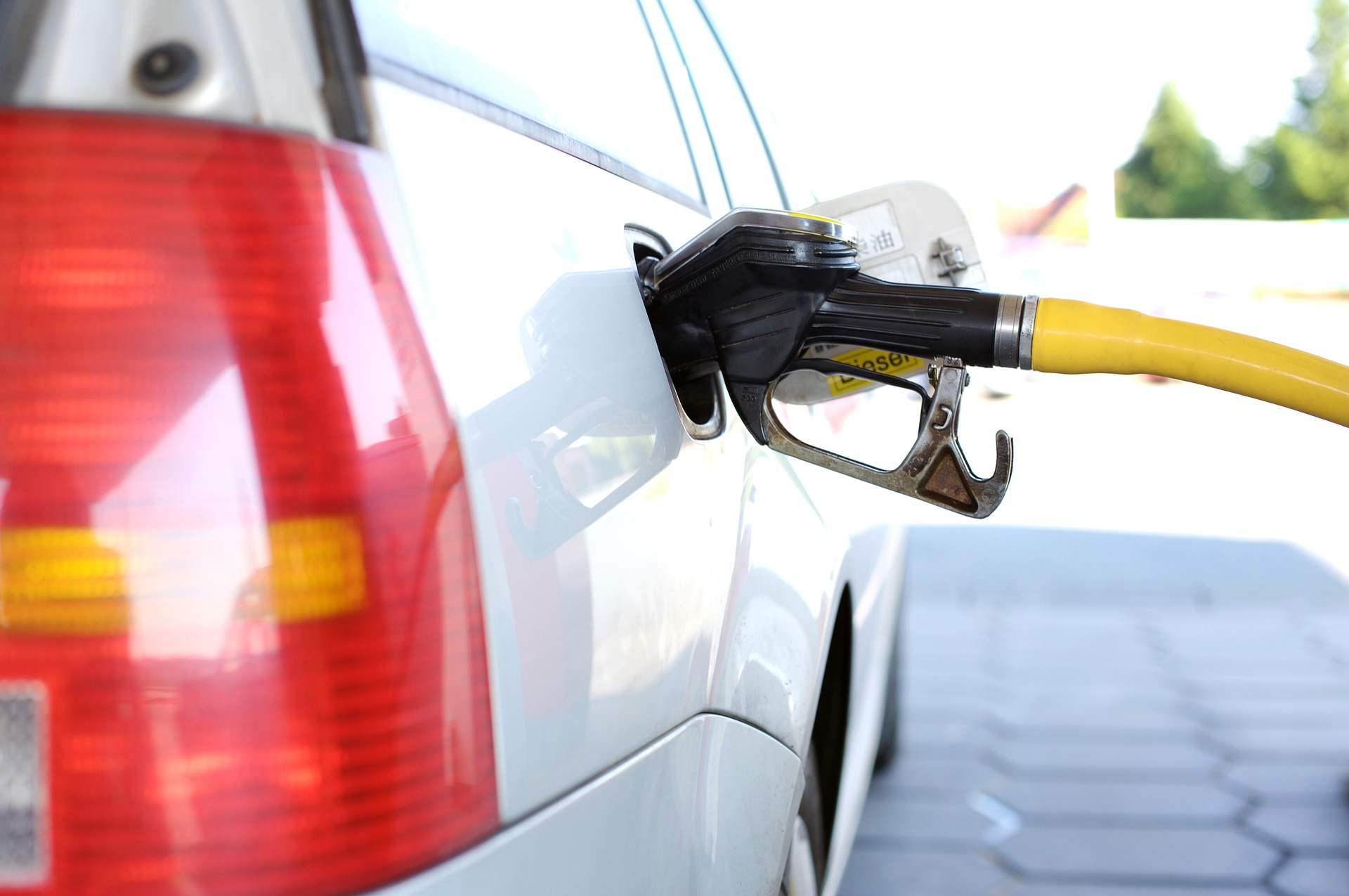 Diesel czy benzyna?