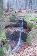 magurski-park-narodowy-symbol_m-6503373