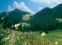 magurski-park-narodowy_m-6840410